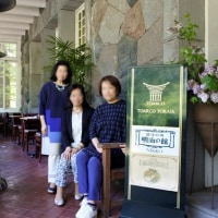 新緑の東照宮・陽明門
