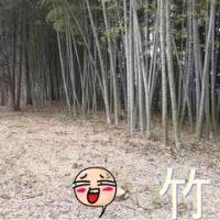 竹山≠竹を燃やす。