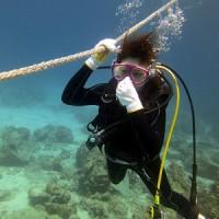大潮で激流れでした。沖縄ダイビング 那覇シーマリン