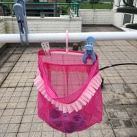 ショッキングピンクのネット袋の件