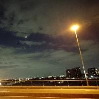 月とスッポン