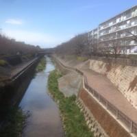 石神井川を歩く:豊島園〜東伏見