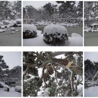 No.1.119 「雪のひょうたん池」のお話。