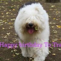 2th  Happy Birthday