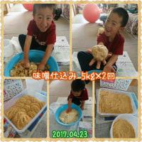 味噌作り10kg!