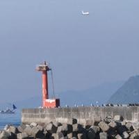 飛行機狙いは今津港から(12月03日)