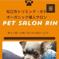 petsalonRin情報〜〜‼️