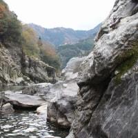 四国の旅・・・その2。大歩危小歩危峡、ボンネット観光バス、祖谷のかずら橋