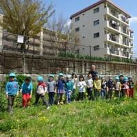 幼児教室すずめ さくら組~たくさんのダイナミック&繊細な経験で大きく成長できる1年です