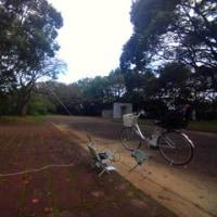 早朝サイクリングはしんどい