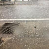 大粒の雹が!(◎_◎;)