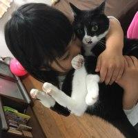【今の私】 子猫を迎え入れた