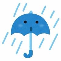 雨の日です
