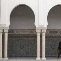 あるムスリムのフランス人はパリのテロ事件を西側の陰謀と見ている。