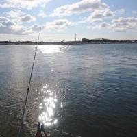 2017年釣り初め!石狩川河口でカワガレイ!
