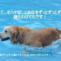 2012年初の屋外プール遊び・・・の巻!!!