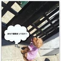 2659)小梅3歳・・・