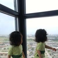 双子写真の整理の仕方