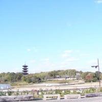 宝福寺の遠景・・・・・