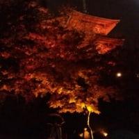 京都観光ーその3