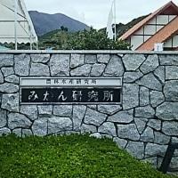 みかん研究所