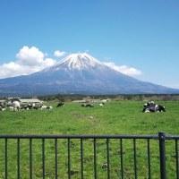 富士山いいわ~。。