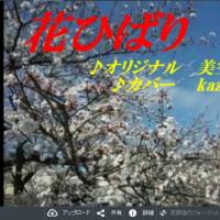 【新曲】♪・ 花ひばり / 五木ひろし // kazu宮本