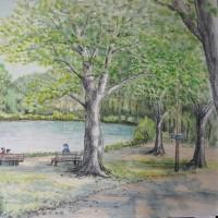 昭和記念公園の水辺2