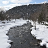 けっこう雪ふかっ!山の渓は春が遠いようです。