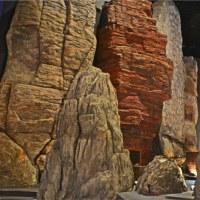 生命の星 地球博物館
