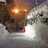 暖気の後の吹雪が気になる