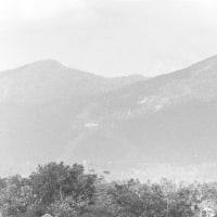 080319 チベット暴動 「収拾不能なら引退」