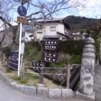 京都の桜はあと少し;嵐山~哲学の道~金閣寺~二条城前の町や~すっぽん「大市」