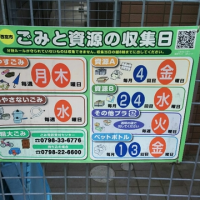 闘病日記6/27(火)・・・クチナシの花の薫り