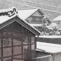 3月26日 雪景色