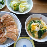 昨日の昼ご飯~今朝のご飯