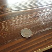 赤いヤモリと10円玉