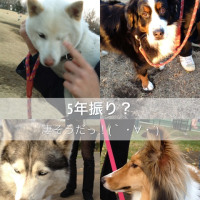 今日わ横浜DOLPHY@「Ub-X」