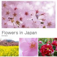 花の写真集「Flowers in Japan」を作成