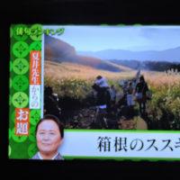 10/28 夏井先生 今週のお題