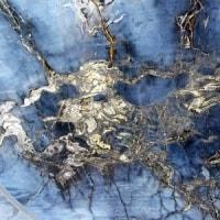 夜宮の大珪化木