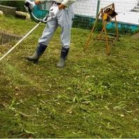 5月24日(水)  コミセンの草刈り