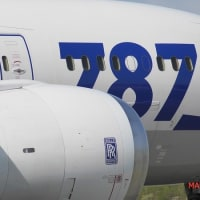 飛行機が見たくて その2 ANA787