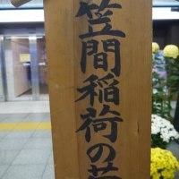 三大稲荷の笹間稲荷神社の菊まつり~新橋駅にて激写