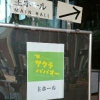 サクラパパオー@穂の国とよはし芸術劇場PLAT 5/19