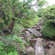 編笠山登山(1)(標高2,524m 富士見町・山梨県北杜市)【観音平登山口~山頂】
