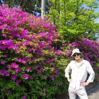 ボクシングの罠にハマった、村田諒太。