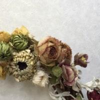 花♪   花♪