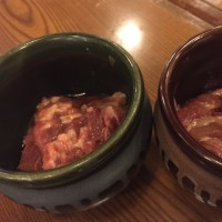 北海道旅行2日目 札幌ナイト…
