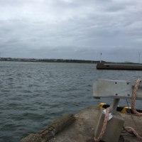 ハゼ祭り【銚子漁港】